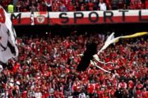 Carta Aberta ao: Sport Lisboa e Benfica